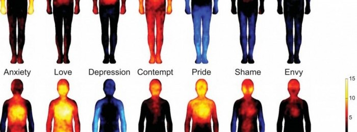 What emotions look like.