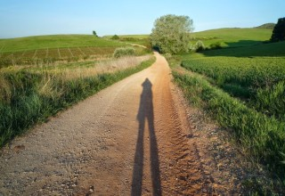A long walk to freedom…